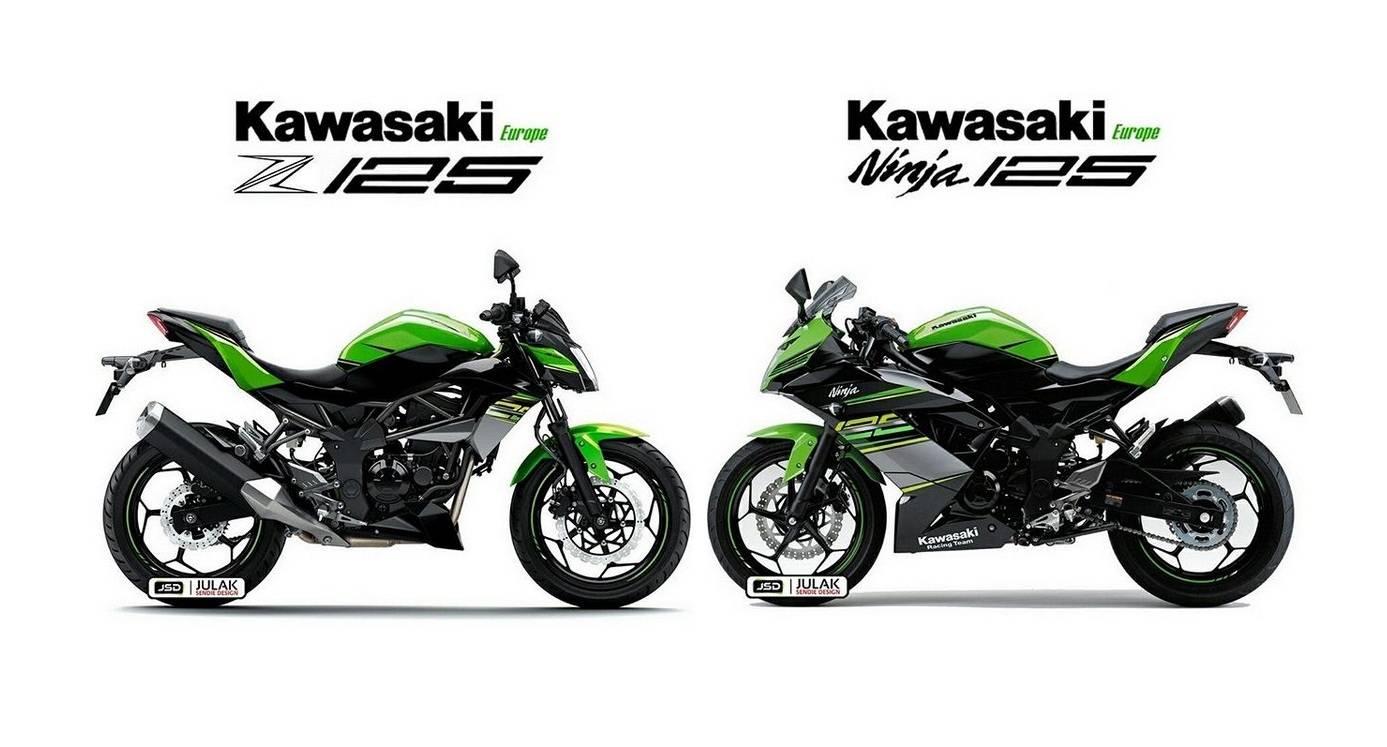 Kawasaki Ninja Cc Terbaru